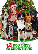 12 Dog Days Til Christmas
