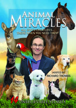 Animal Miracles)152x215