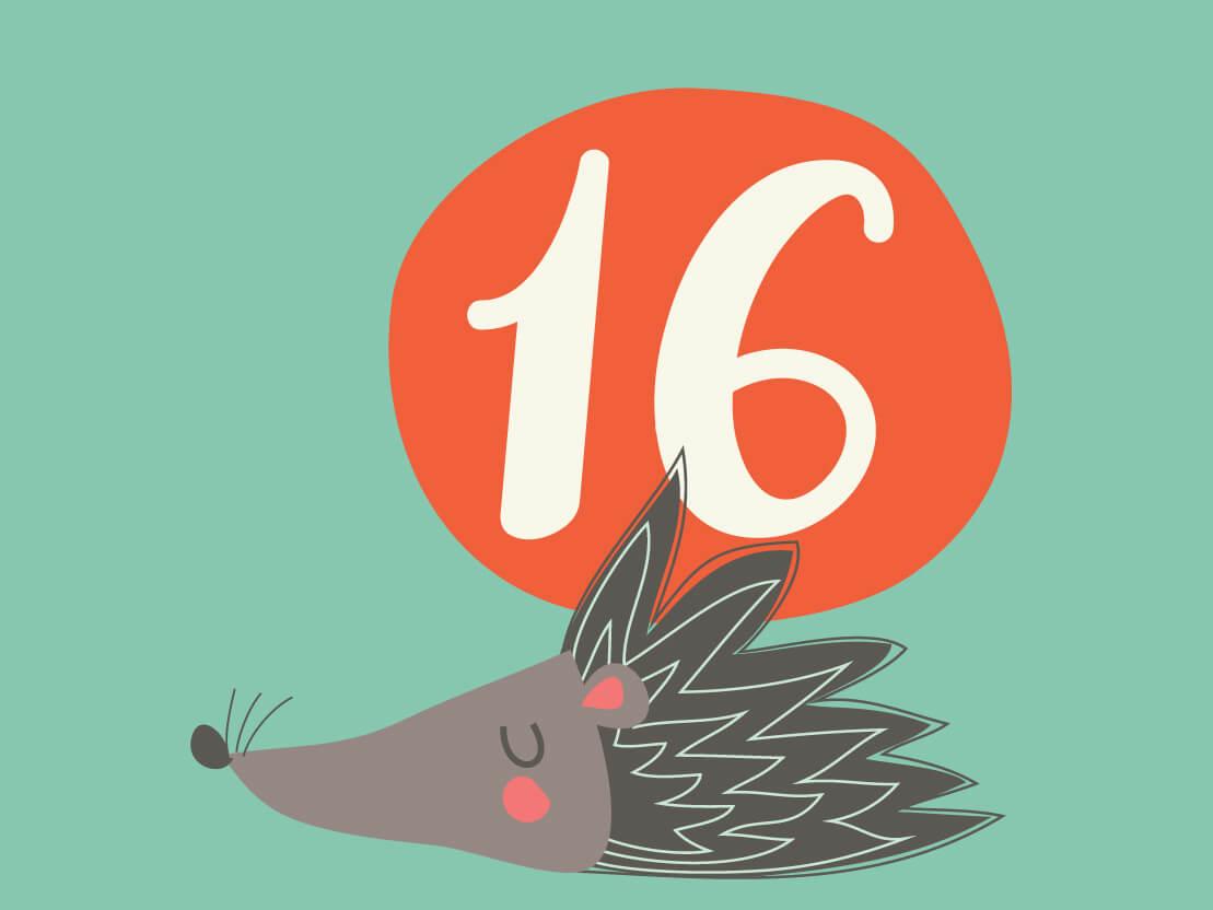 16. Christmas Advent Calendar 1.1
